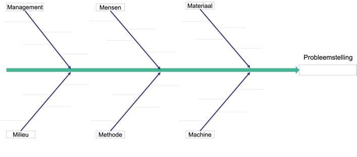 Ishikawa diagram ofwel Visgraatdiagram implementeren door Blom Consultancy